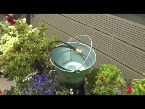 Cómo regar las plantas durante las vacaciones- Consejos de ...