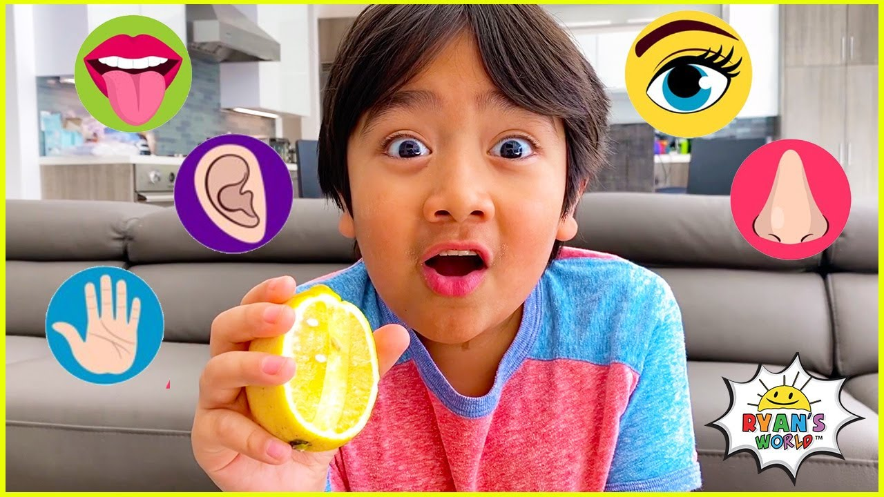 Download The Five Senses and more 1 hr kids educational learning video!