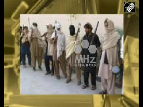 Afghanistan News - Taliban commander arrested in Kabul city Afghan National Directorate of Security