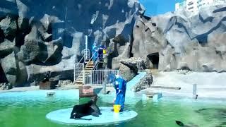 Ижевск зоопарк 6