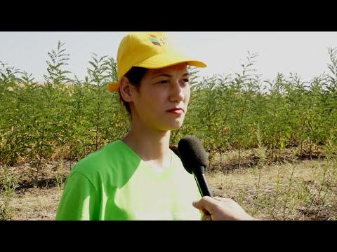 Alternative and sustainable fuel in Moldova - Media TV