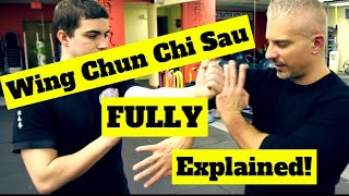 Why Wing Chun CANNOT Handle Boxers or Wrestlers