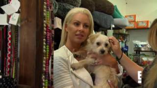 Maryse Ouellet Cries Over Dog Adoption