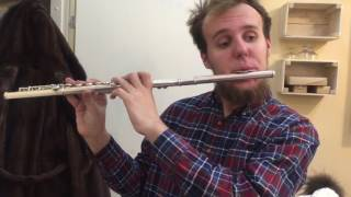 Саундтрек из фильма Гарри Поттер, исполненный на флейте Димой