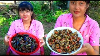Cooking skills | Yummy Mussel Stir Fry with Young Green Pepper | survival skills. HT