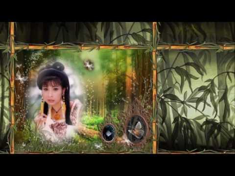 Phượng Mai - Ho Quang chi bao