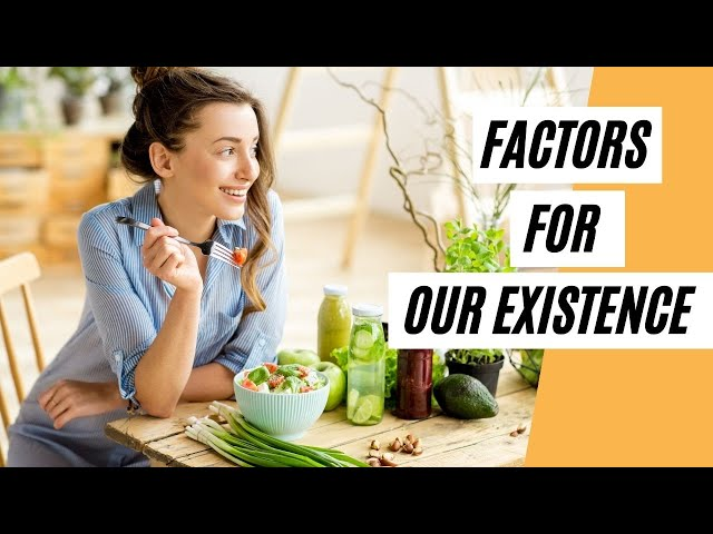 What Are The Three Main Factors That Are Important For Our Existence (Healthy Living Tips)