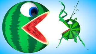 Pacman Watermelon meets a Mantis-PACMAN travel around city find surprise toys in tussock