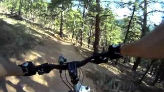 Canyon Link Downhill Mountain Biking - Boulder, Colorado