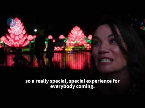 Wild Lights At Dublin Zoo Brings Asia To Ireland