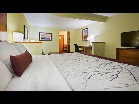 Best Western Plus Holland Inn & Suites - Holland (Michigan) - United States
