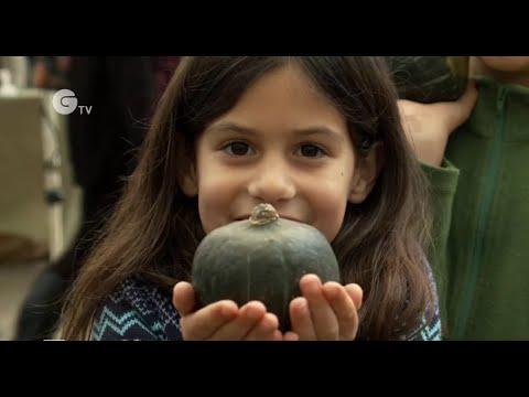 The Great Pumpkin Rescue - The First Oxford Pumpkin Festival