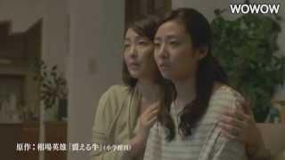 企業の嘘を喰わされるなーー。食の安全と日本の都市構造に切り込む危険...