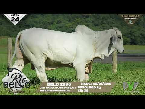 LOTE 24   BELO 2986