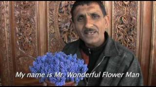 MR. WONDERFUL FLOWER MAN - KASHMIR