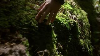 Трейлер канала Семь Легенд  - Фантастика, мистика, мифология
