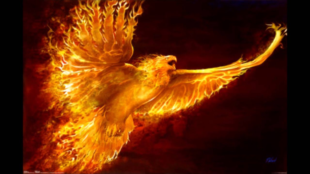 The Red Phoenix Rising