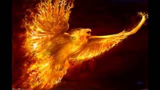 Phoenix Rising Paul Dinletir
