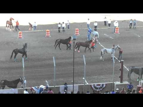 All Nations Indian Horse Relay Championship 2015 Billings Montana