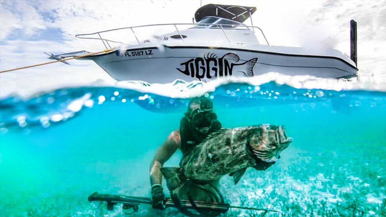 Spearfishing for GIANT Grouper in Crystal Clear Water!! (MEGA REEF)