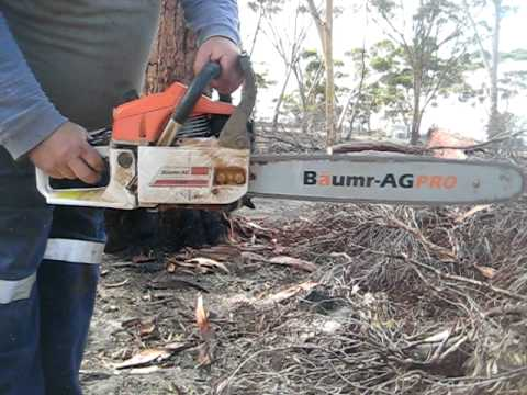 Baumr-Ag PRO SX62 62cc 22in bar Chainsaw Startup