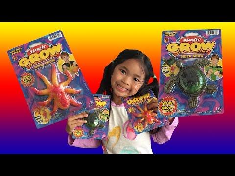 Magic Grow Huge Sea Turtle and Octopus