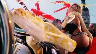 Крутящий момент / Torque ( 2004 ) Лучшие моменты:: Adrenalin Inside