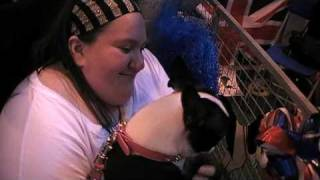 "Sonia Fusses A Boston Terrier Girl At ""discover Dogs"", Crufts 2010"