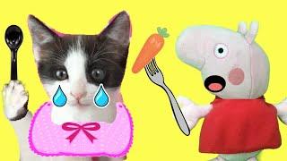 peppa-pig-en-espan-ol-pepa-la-cerdita-y-la-comida-de-mis-gatitos-bebe-s-luna-y-estrella-funny-cats