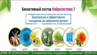 постер к видео НЕЙРОСИСТЕМА 7 что это НЕЙРОСИСТЕМА 7 состав