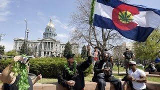 A Quarter Of US States Could Legalize Weed This Year