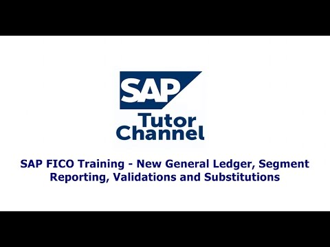 SAP FICO Training   New General Ledger, Segment Reporting, V