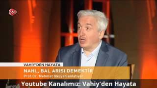 Nahl, (Dişi)Bal Arısı Demektir. - Prof. Dr. Mehmet Okuyan | HD