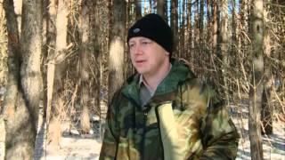 24 03 15 Разрешение на охотничье оружие через госуслуги