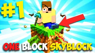 MINECRAFT MA CON UN SOLO BLOCCO A DISPOSIZIONE !! One Block Skyblock EPISODIO 1
