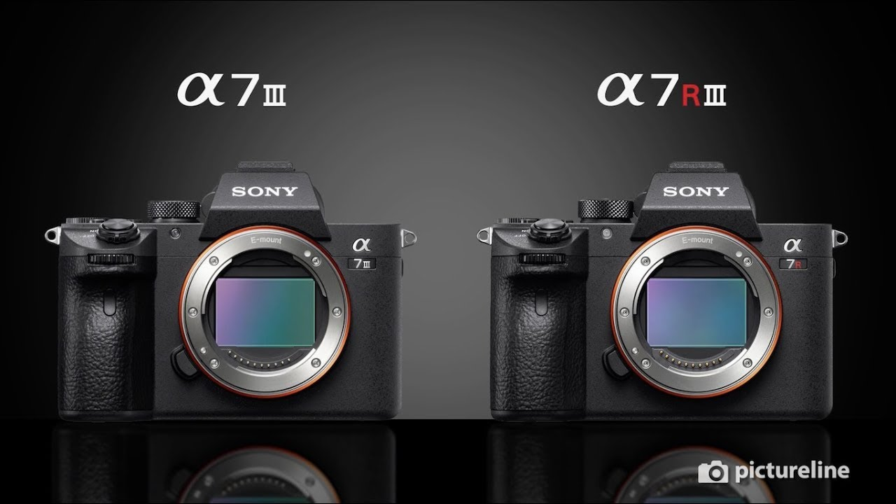 Sony A7III vs A7RIII: Which One is Your Next Camera?
