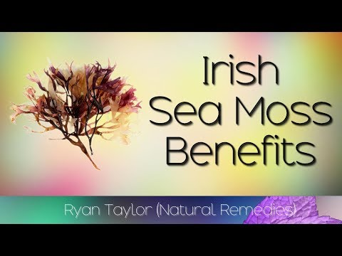 Irish Sea Moss: Benefits and Uses