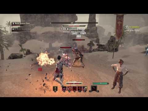 Master Assassin Glenn Wrecking a Level 510