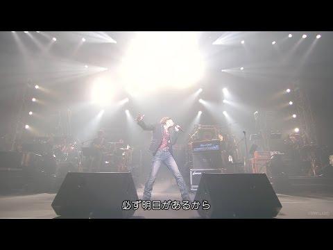 """山根康広★YELLを君に 【 LIVE """"STARTING OVER"""" 】 ▶5:46"""