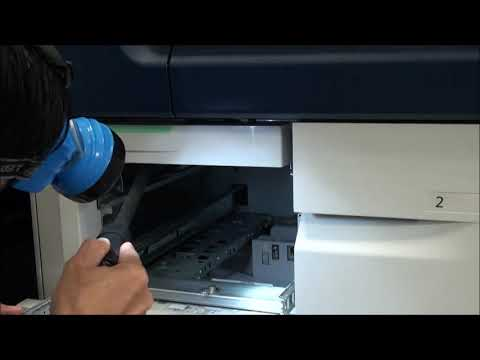 Xerox D125 - Removing pieces of paper  in pick-up, feed, separation rollers area, and trays 1,2,3