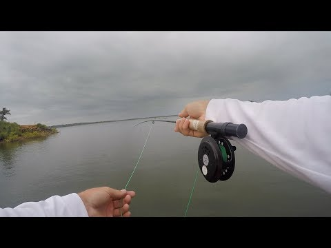 Fishing in Front Hurricane Harvey - AMAZING Bass Feeding!
