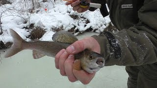 Все о рыбалке