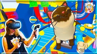 The Ultimate Way To Fix Kittens! Let's Play Cat Sorter VR
