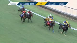 Vidéo de la course PMU PREMIO FORMASTERUS