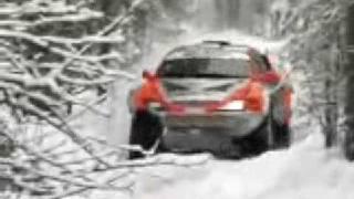 """ралли-рейд """"Северный лес"""" 2009"""