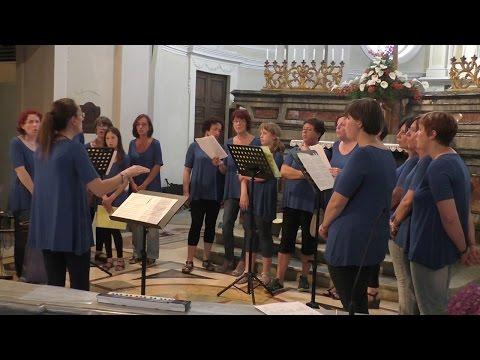 Fratello sole Sorella luna - coro Armonia