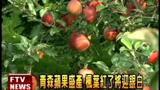 【民視即時新聞】台灣是日本青森蘋果最大的出口國,儘管今年歷經311強震...