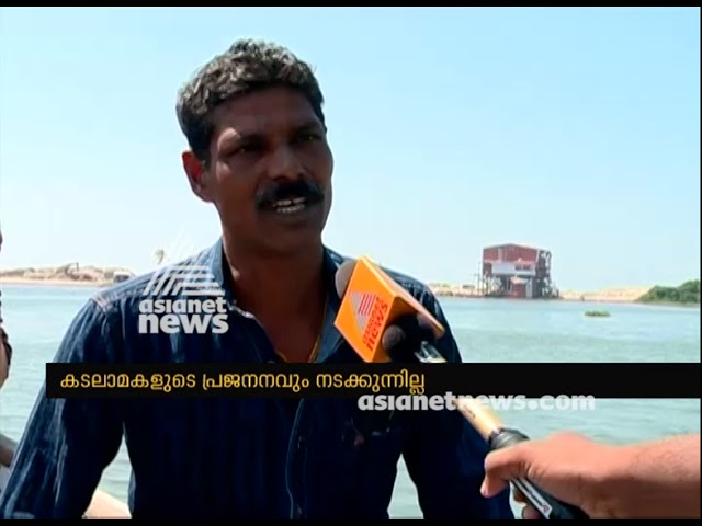 Alappad mining ; Coir and fishing sector facing crisis