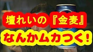 【話題】【檀れい】の『金麦』新CM「うちの鍋ちゃん」篇が、女性からバ...