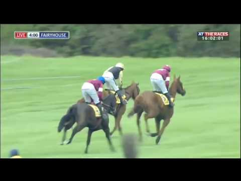 Yorkhill behaves badly in the Ryanair Gold Cup Novice Chase